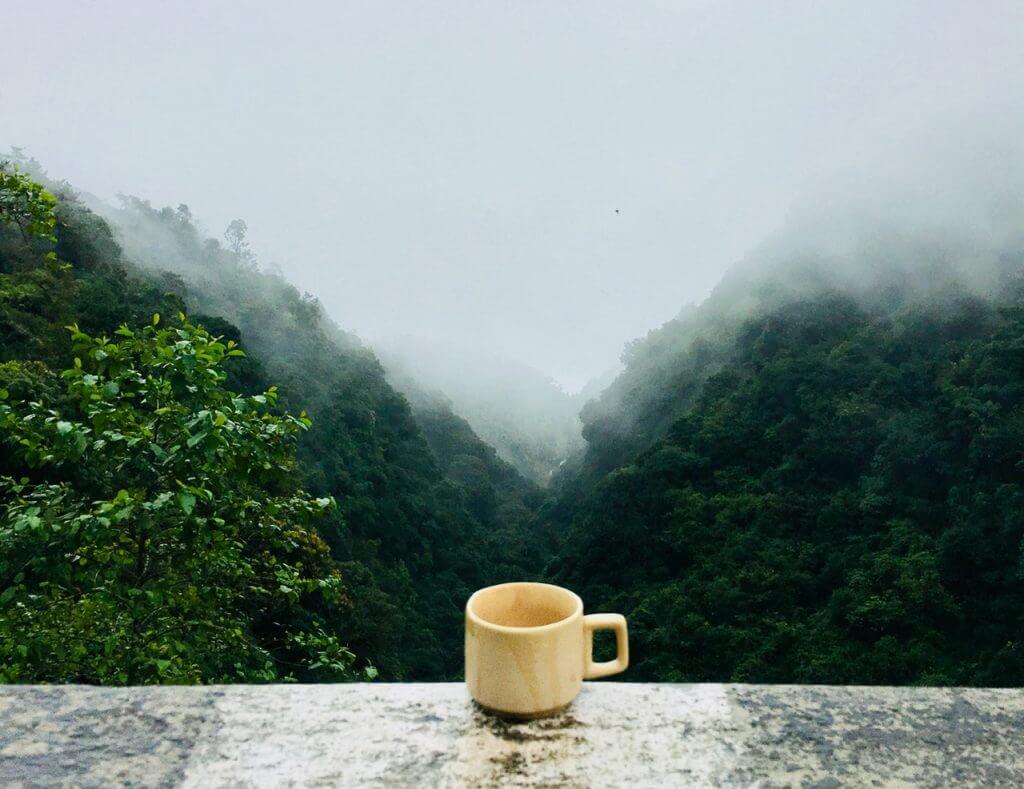 Kaffe är en del av vår vardag men det kan även vara bra för vårt välmående.
